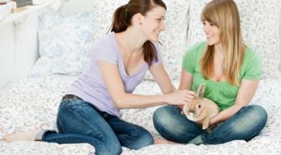 Pelihara Kelinci Bermanfaat bagi Kesehatan