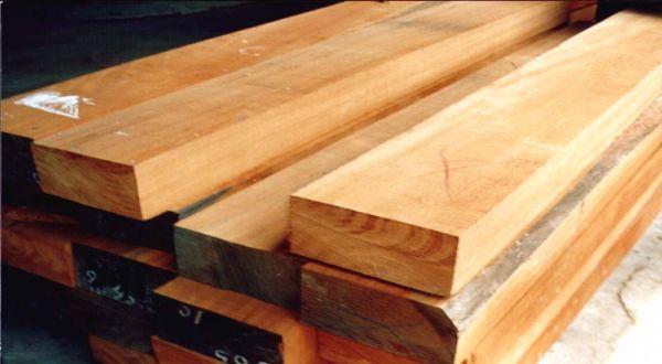 \Perhutani Bangun Pabrik Plywood di Jatim Rp30 M\