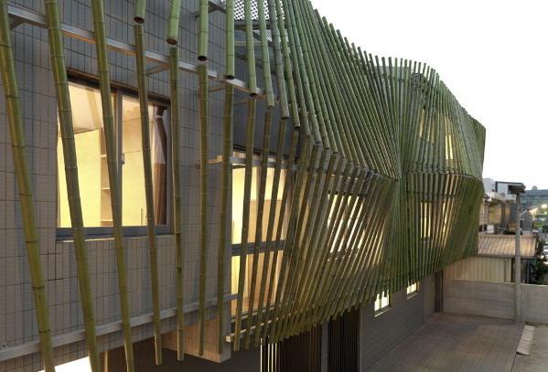 \Cara Sederhana Merawat dan Mengawetkan Bambu\
