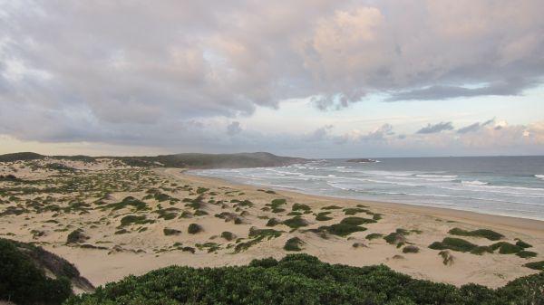 Ini Dia Surganya Nudis di Australia