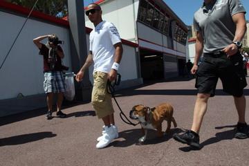 Lewis Hamilton menuntun anjingnya di paddock (Foto: Crash)