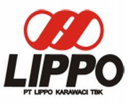 \Lippo Tidak Masalah Rupiah Melemah\