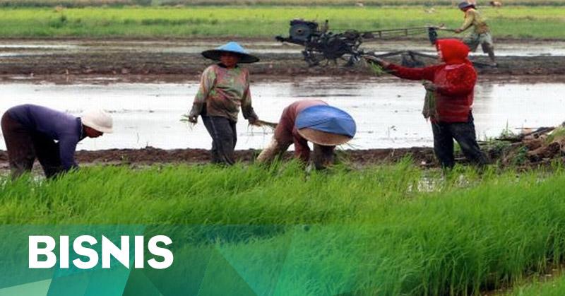 Teknologi dan Logistik Modern Akan Sejahterakan Petani Indonesia