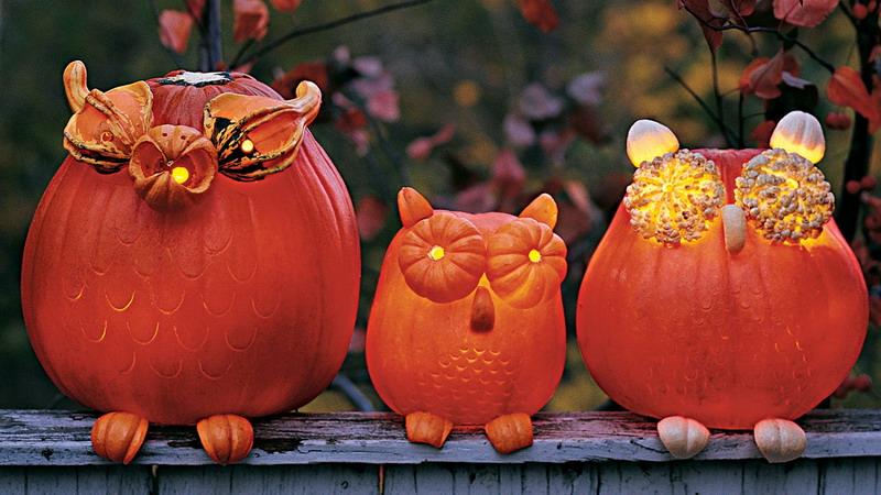 Yuk, Meriahkan Halloween, Bikin Burung Hantu dari Labu Saja