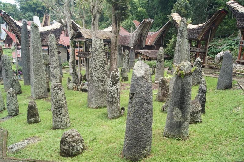Mau Wisata Mistis ke Tana Toraja, Simak Panduan Perjalanannya