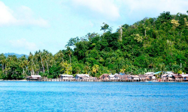 Desa Sawinggrai Surganya Burung Eksotis di Papua