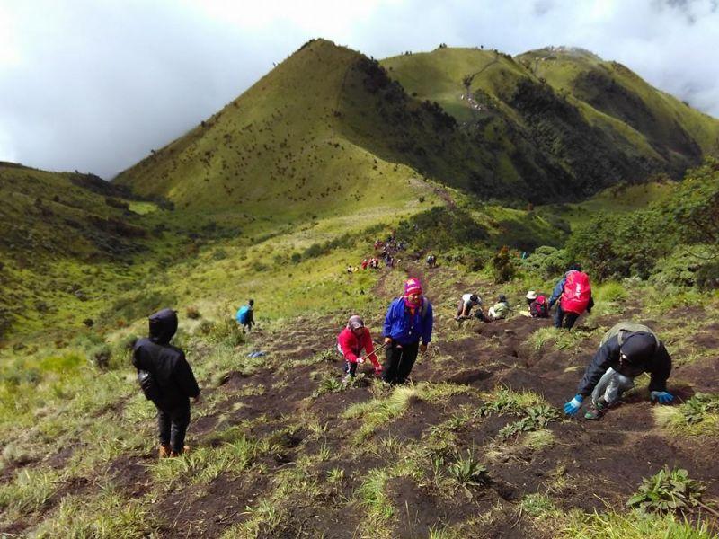 Lima Mitos yang Ditakuti Pendaki di Gunung Merbabu