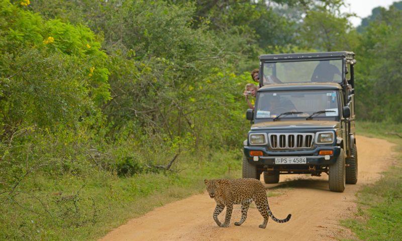 5 Petualangan di Afrika yang Tak Menguras Dompet