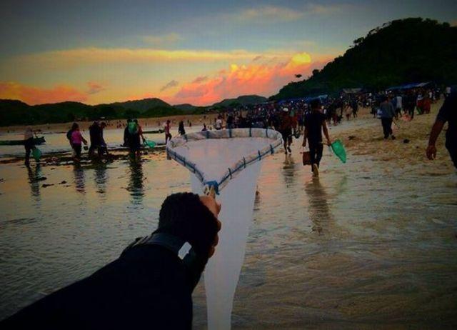 Mengulik Sejarah Festival Bau Nyale di Lombok