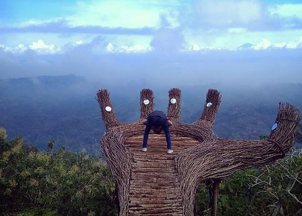 Indahnya Panorama Pinus Pengger di Yogyakarta