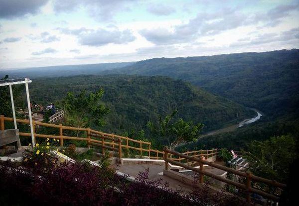 Kebun Buah Mangunan Jadi Incaran Wisatawan Dunia