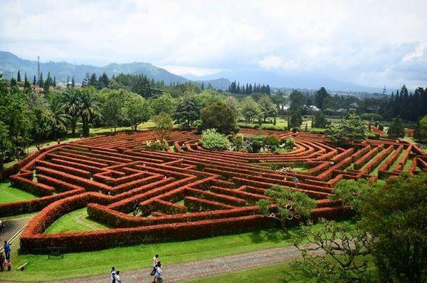 Taman Bunga Cantik di Jawa yang Wajib Dikunjungi