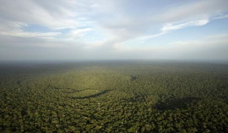 \Wah, 4,1 Juta Ha Kawasan Hutan untuk Reforma Agraria\