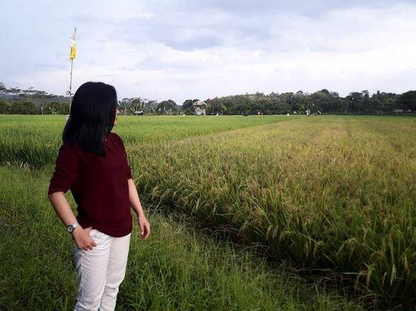 Asyiknya Libur Singkat di Kebun Pasir Mukti, Bogor