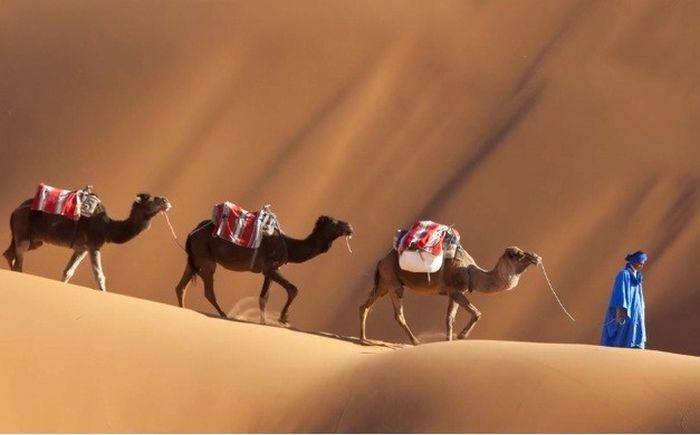 Hal yang Perlu Diketahui Sebelum Berlibur di Maroko