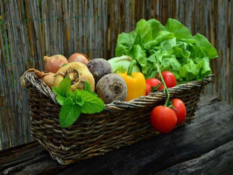 Ini Lho Alasan Anda Harus Mulai Mengonsumsi Makanan Organik