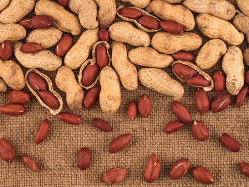 Kacang Baik Dikonsumsi oleh Ibu Hamil untuk Cegah Depresi