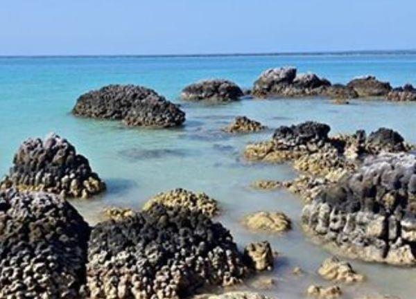 Nias Juga Punya Laut Mati Lho