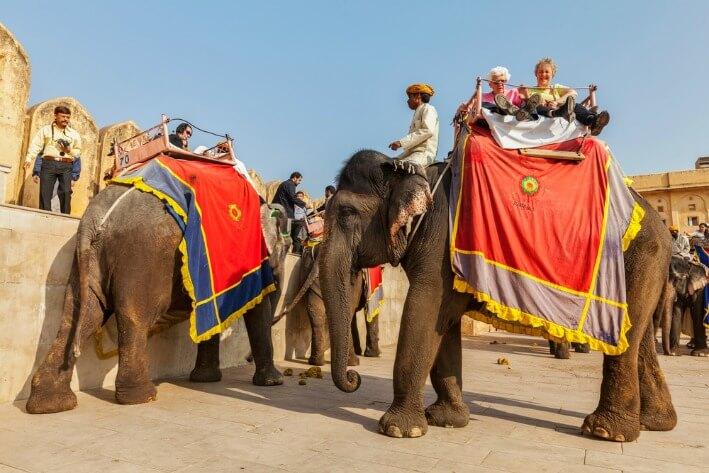 5 Rekomendasi Aktifitas di Jaipur