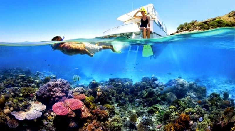 UNCOVER INDONESIA: Pulau Menjangan di Bali Surga Terbaik Bagi Penyelam Dunia