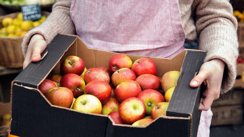 Astaga, Apel yang Anda Beli di Supermarket Bisa Jadi Sudah Berumur 1 Tahun
