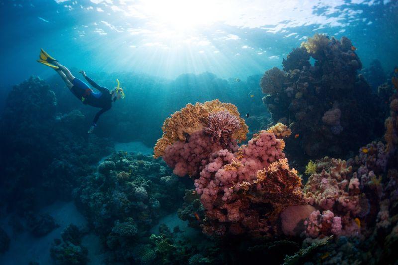 UNCOVER INDONESIA: Pantai Tulamben, Spot Terindah di Bali