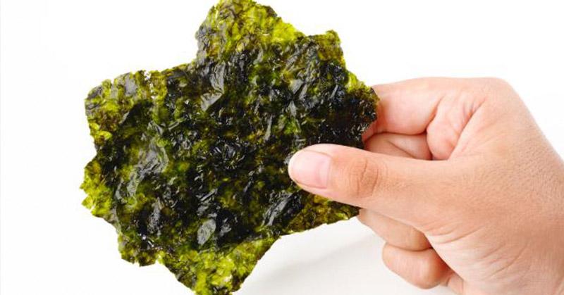 Memasak Tanpa Garam Bisa Tetap Enak? Bisa Donk, Pakai Rumput Laut