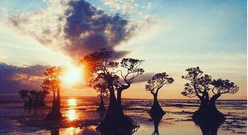 UNCOVER INDONESIA: Pesona Magis Sunset di Pantai Walakiri