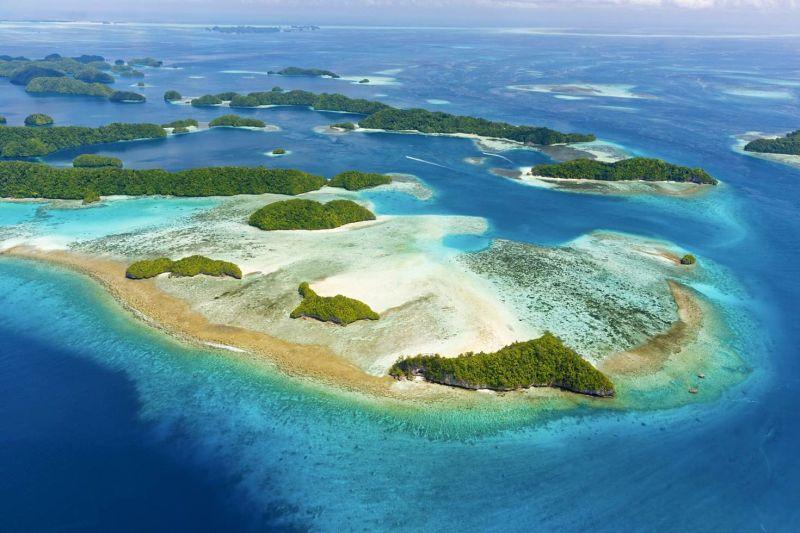 Luar Biasa! Bangkai Pesawat Perang Dunia II Ditemukan di Pulau Palau