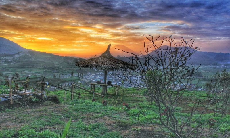 UNCOVER INDONESIA: Bukit Sekuter Dieng, Spot Eksotis Berbalut Suhu 4 Derajat