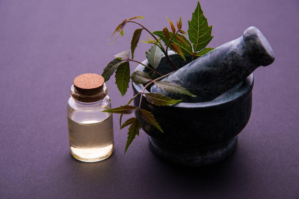 Ampuh Mengatasi Rambut Rontok, 5 Tanaman Herbal Terbukti Solusinya