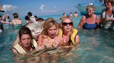 Foto Ikan Pari Peluk Tiga Gadis Diambil saat Traveling