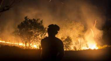 Saksi Sebut Hutan Terbakar Bukan Faktor Kesengajaan