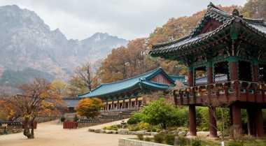 Inilah Taman Terindah di Korea Selatan
