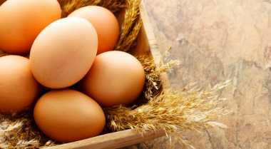 Cara Mengetahui Usia Telur