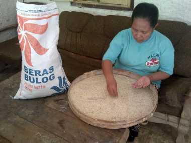 Ketika Warga Miskin Harus Makan Beras Apek dan Berkutu