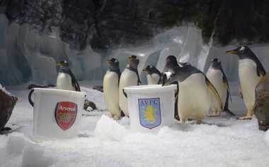 Aston Villa Juara FA Cup?