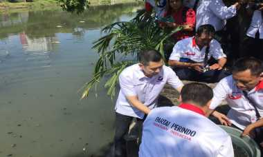 Hary Tanoesoedibjo Tebar 50 Ribu Ikan Nila di Kalimas