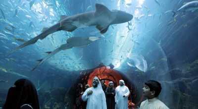 Mal di Dubai Berada di Bawah Laut