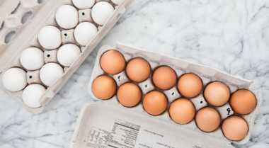 Kenali Perbedaan Telur Ayam Kampung dengan Negeri
