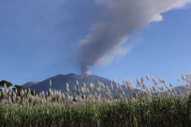 Erupsi Gunung Raung Tak Akan seperti Sinabung