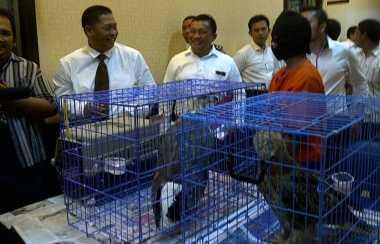 Polda Jatim Tangkap Sindikat Perdagangan Burung Langka