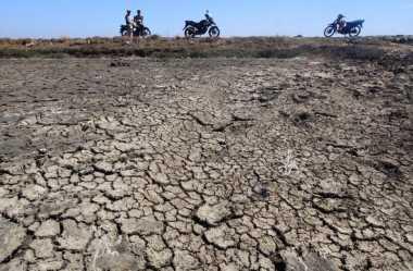 BNPB: Kekeringan Terjadi karena Jumlah Penduduk Bertambah