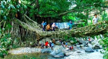 Jembatan di Sumbar dari Akar Pohon
