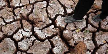 95 Desa di Banten Dilanda Kekeringan