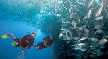 Pengalaman Buruk Enno Lerian saat Diving