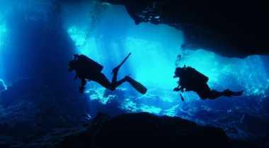 Dive Spot di Maluku Indah