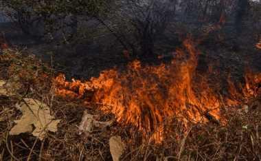 Kebakaran Lahan di Riau Dekati Permukiman Warga