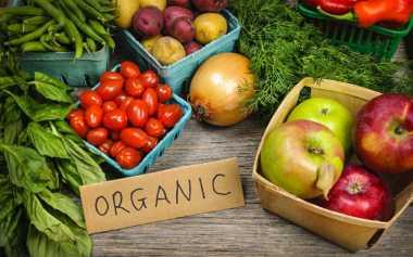 Sayuran Organik Pilihan Tepat untuk Raw Food