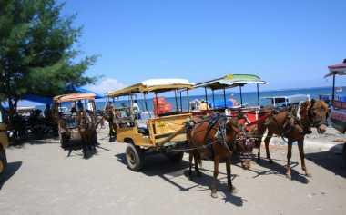 Ini Bedanya Cidomo di Lombok dengan Delman di Jawa